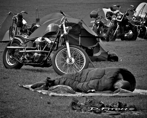 Debbie Fitch Photography: Wheels, Rails & Skate &emdash;